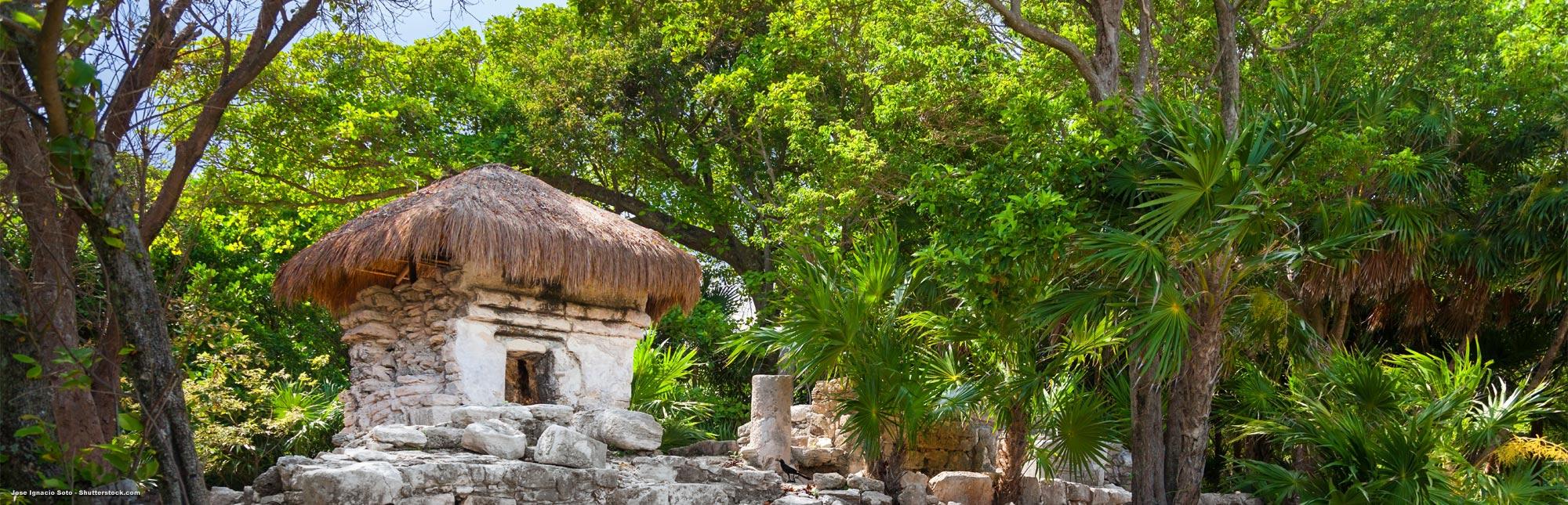 Sprachreisen nach Playa del Carmen
