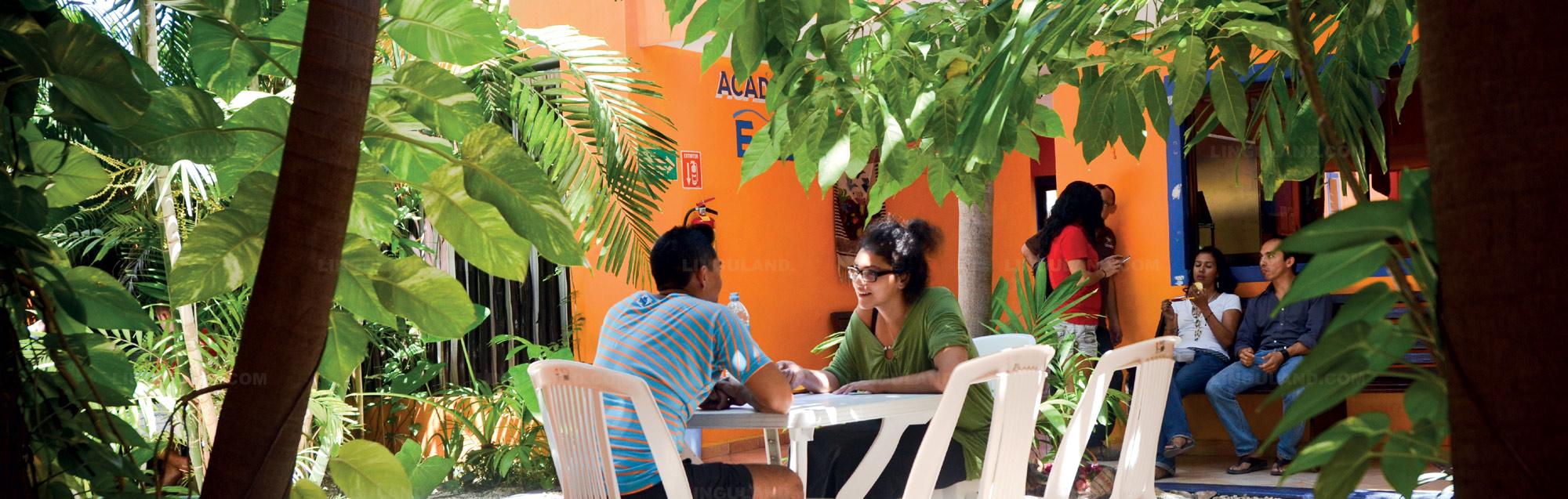 École de langue Don Quijote Playa del Carmen