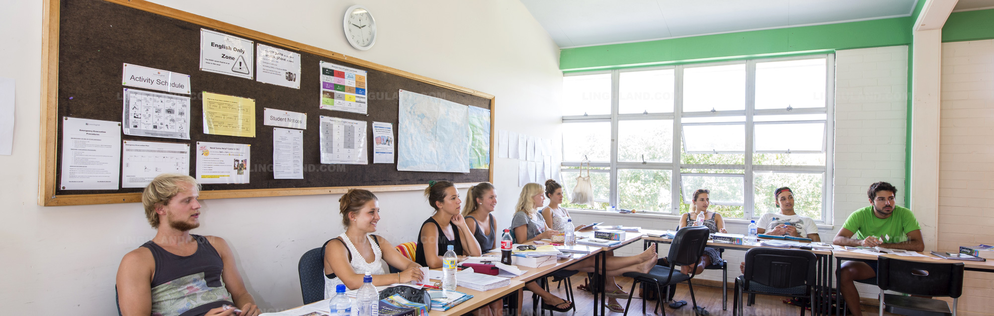 Escuela de inglés Lexis Byron Bay