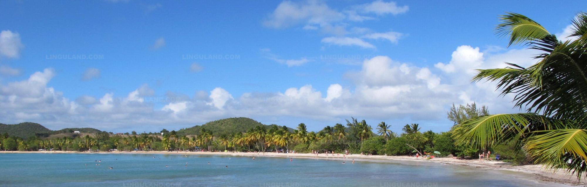 Schritte zum Studentenvisum für Martinique